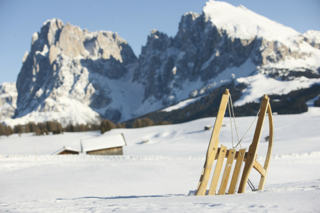 slittino sull'Alpe di Siusi gruppo del Sassolungo
