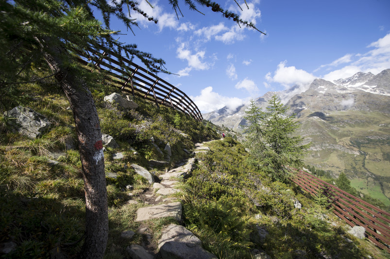 Parco Naturale Gruppo di Tessa in Alto Adige